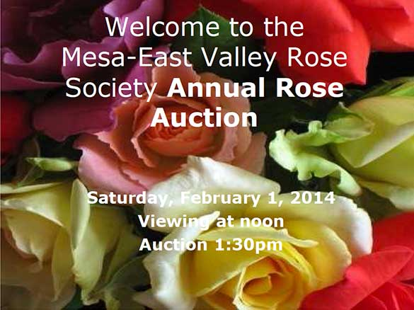 2014 Auction Mesa-east Vlaley Rose Society
