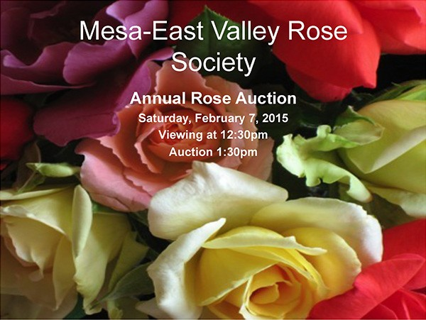 2015-Rose-Auction-image