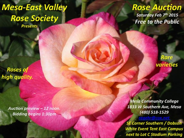 20150207RoseAuction Mesa East Valley Rose Society