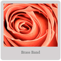 Brass Band Mesa- East Valley Rose Society